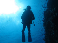 Padi Research about Scuba Diving as therapy